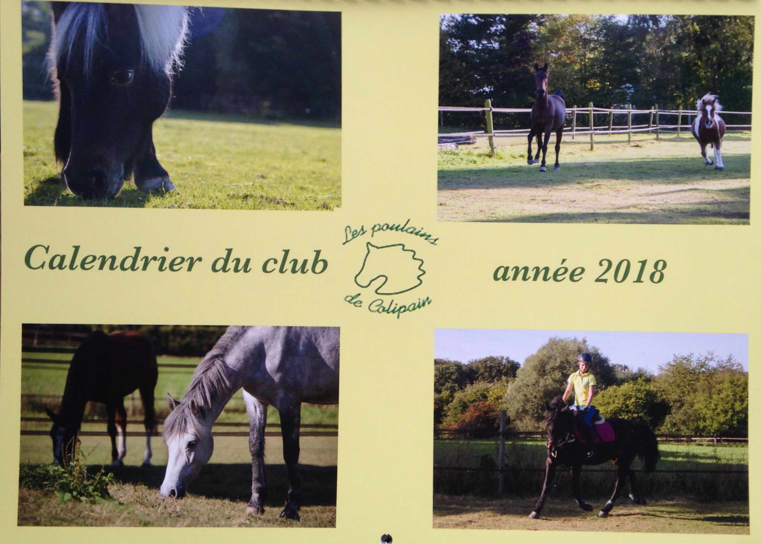 Les Stars du Poney-Club